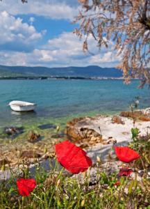 Hotel Sveti Kriz, Hotels  Trogir - big - 90