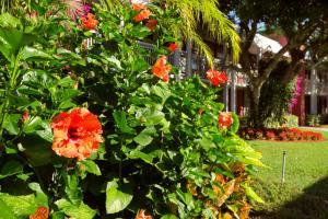 Ramada by Wyndham Naples, Hotely  Naples - big - 23