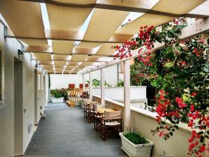 Mina Accomodation, Vendégházak  Tropea - big - 32