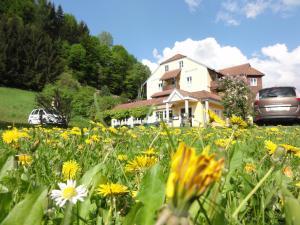 3 hvězdičkový hotel Familiengasthof Maier Mautern Rakousko