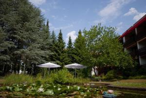 VitalHotel Ascona