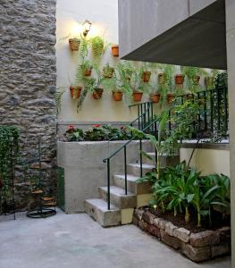 29 Madeira Hostel by Petit Hotels, Ostelli  Funchal - big - 25