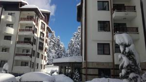 Apart Hotel Flora Residence Daisy, Aparthotels  Borovets - big - 52
