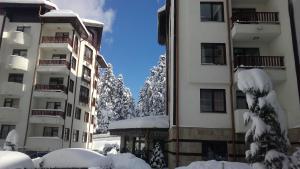 Apart Hotel Flora Residence Daisy, Apartmánové hotely  Borovec - big - 57