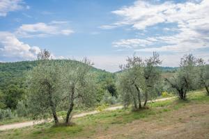 Agriturismo Fattoria Di Gratena, Agriturismi  Pieve a Maiano - big - 86