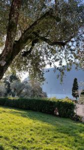 Villa Leilani B&B - AbcAlberghi.com