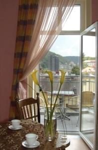 Apartmany Victoria, Apartmánové hotely  Karlove Vary - big - 40