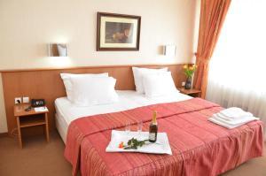 Hotel Bellevue - Skopje