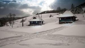Ethno Bungallows Boškova Voda, Horské chaty  Zlatibor - big - 76