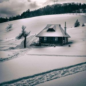 Ethno Bungallows Boškova Voda, Horské chaty  Zlatibor - big - 86