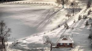 Ethno Bungallows Boškova Voda, Horské chaty  Zlatibor - big - 82