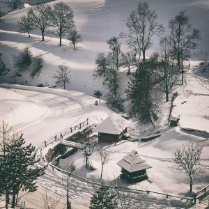 Ethno Bungallows Boškova Voda, Horské chaty  Zlatibor - big - 77