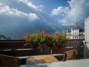 Hotel Bernerhof Grindelwald, Hotely  Grindelwald - big - 35