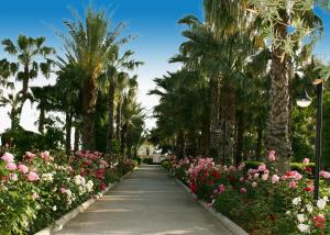 Adora Golf Resort Hotel, Rezorty  Belek - big - 36