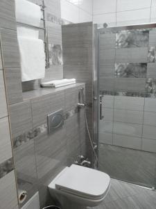 Hotel Сomplex Ak-Zhaik, Hotels  Karagandy - big - 32