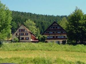 Gasthof Erlenhof - Alpirsbach