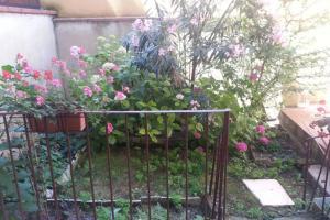 Appartamento Con Giardino, Apartments  Florence - big - 50