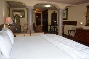 Quinta del Rey Hotel, Hotels  Toluca de Lerdo - big - 2