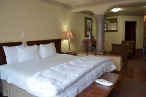 Quinta del Rey Hotel, Hotels  Toluca de Lerdo - big - 4