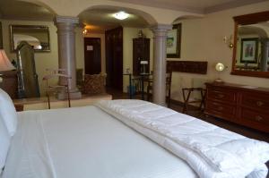 Quinta del Rey Hotel, Hotels  Toluca de Lerdo - big - 6