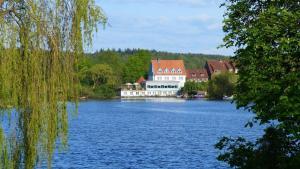 Restaurant und Hotel Zum Weissen Ross - Gudow