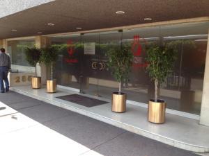 Отель Hotel Mexicali, Мехико