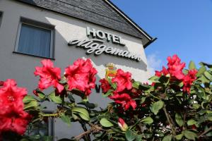 Hotel Niggemann - Ellinghausen
