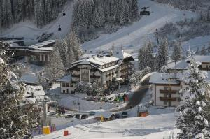 Ski Resorts in Province of Belluno