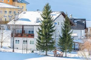 Alpeneer - Apartment - Lackenhof am Ötscher