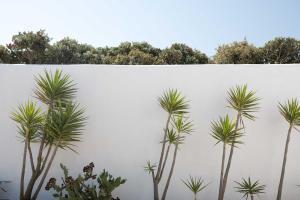 Yakinthos Residence, Apartmánové hotely  Panormos Mykonos - big - 74