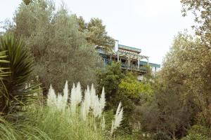 The Olive Farm Guest House (25 of 68)