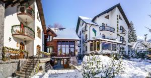 Pensiunea Crocus - Hotel - Poiana Brasov