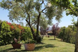 Agriturismo Il Pallocco, Farm stays  Montecastrilli - big - 74