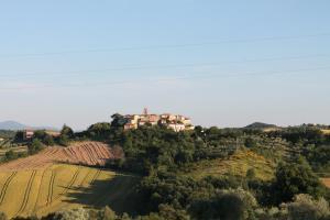 Agriturismo Il Pallocco, Farm stays  Montecastrilli - big - 75
