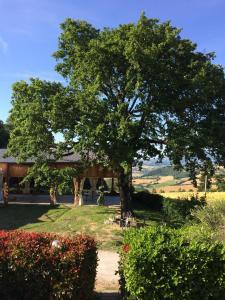Agriturismo Il Pallocco, Farm stays  Montecastrilli - big - 76
