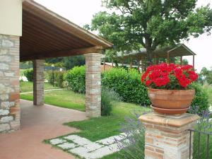 Agriturismo Il Pallocco, Farm stays  Montecastrilli - big - 72