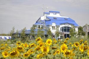 Hotel Vivat Provincia - Vilkhove