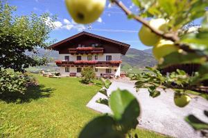 Kolbbauernhof - Accommodation - Niedernsill
