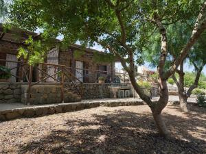 Le Case di Mamma Carmela - Country Houses - Ustica