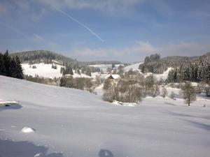 Ferienwohnung am Sägberg - Brigach