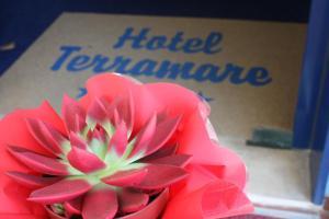 Hotel Terramare - AbcAlberghi.com