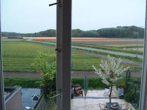 Maria's B&B, Bed and breakfasts  Noordwijk - big - 22