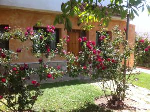 Paraiso Perdido, Bed & Breakfast  Conil de la Frontera - big - 26