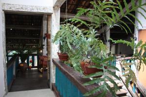 Ilha Deck Hotel, Hotely  Ilhabela - big - 20