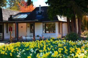 Distinction Te Anau Hotel & Villas (9 of 59)