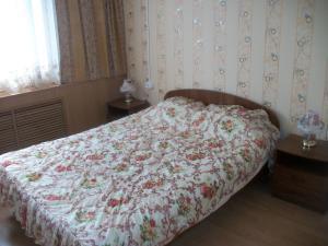 Hotel Lebed - Dankov