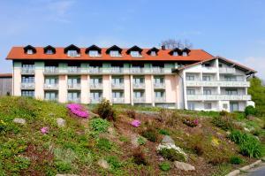 Hotel Landgasthof Hohenauer Hof, Hotels  Hohenau - big - 37