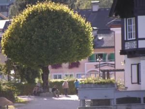 Rosam, Vendégházak  Sankt Gilgen - big - 19
