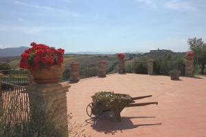 Agriturismo Il Pallocco, Farm stays  Montecastrilli - big - 91