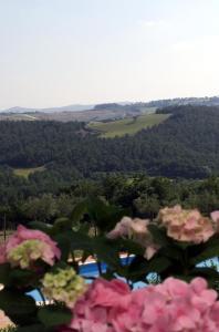 Agriturismo Il Pallocco, Farm stays  Montecastrilli - big - 90